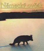 okladaCS2004