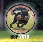 BSP2013